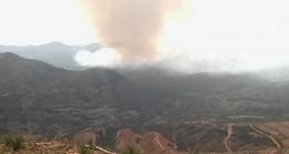 Muğla ve İzmir'de yangın