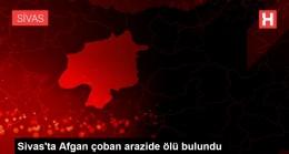 Son dakika haber… Sivas'ta Afgan çoban arazide ölü bulundu