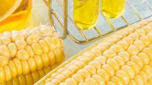 Sağlık Bakanlığı Bilim Kurulu: Nişasta bazlı şeker kansere zemin hazırlıyor